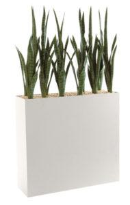 Sanseveria / Plantes artificielles + Jardinière H144 cm Genexco (ref. 13131i)