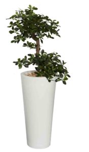 Bonsaï / Plante artificielle H150 cm Bac rond blanc Genexco (ref. 13144)