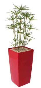 Papyrus Parasol / Plante artificielle H150 cm Bac carré brillant rouge Genexco (ref. 13149)