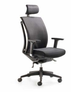 Artichair Plus / Fauteuil de bureau ergonomique avec appuie-tête Mayer (ref. 21132i)