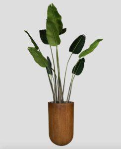 Bananier Tanaman / Plante artificielle décorative H220 cm Tanaman (ref. 29748)