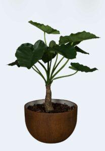 Alocasia 80 Tanaman / Plante artificielle décorative H80 cm Tanaman (ref. 29749)