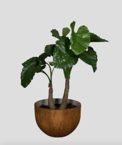 Alocasia 120 Tanaman / Plante artificielle décorative H120 cm Tanaman (ref. 29750)