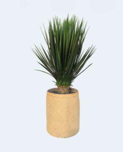 Yucca Tanaman / Plante artificielle décorative H110 cm Tanaman (ref. 29759)