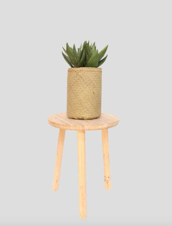 Aloe Tanaman / Plante artificielle décorative H40 cm Tanaman (ref. 29764)
